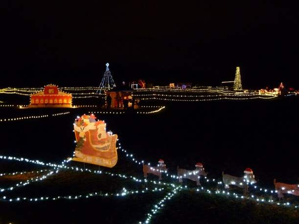 Buda Trail of Lights 2011